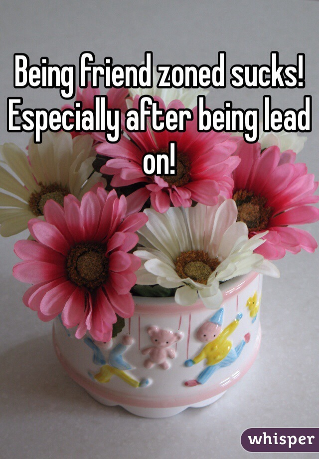 Being friend zoned sucks!  Especially after being lead on!