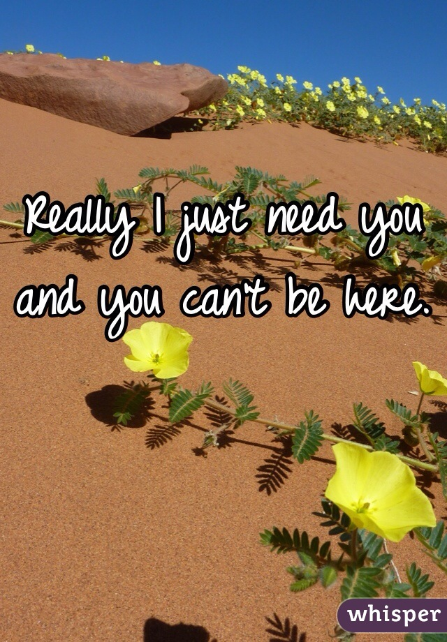 Really I just need you and you can't be here.