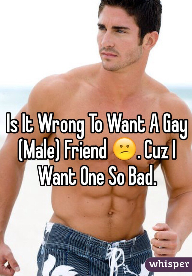 Is It Wrong To Want A Gay (Male) Friend 😕. Cuz I Want One So Bad.