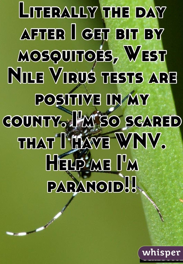 Literally the day after I get bit by mosquitoes, West Nile Virus tests are positive in my county. I'm so scared that I have WNV. Help me I'm paranoid!!