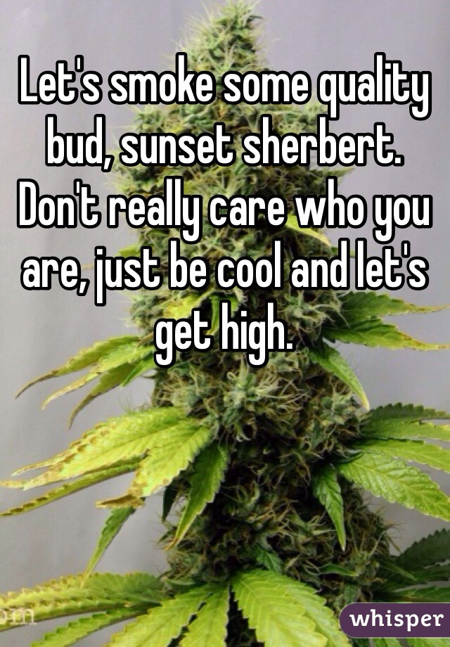 Let's smoke some quality bud, sunset sherbert. Don't really care who you are, just be cool and let's get high.