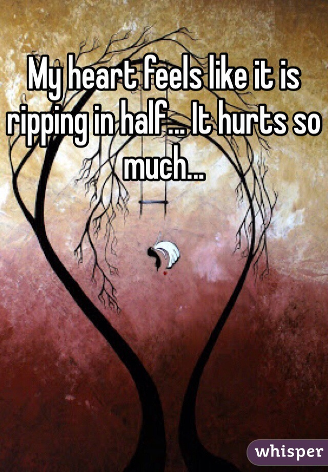 My heart feels like it is ripping in half... It hurts so much...
