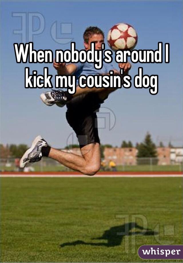When nobody's around I kick my cousin's dog