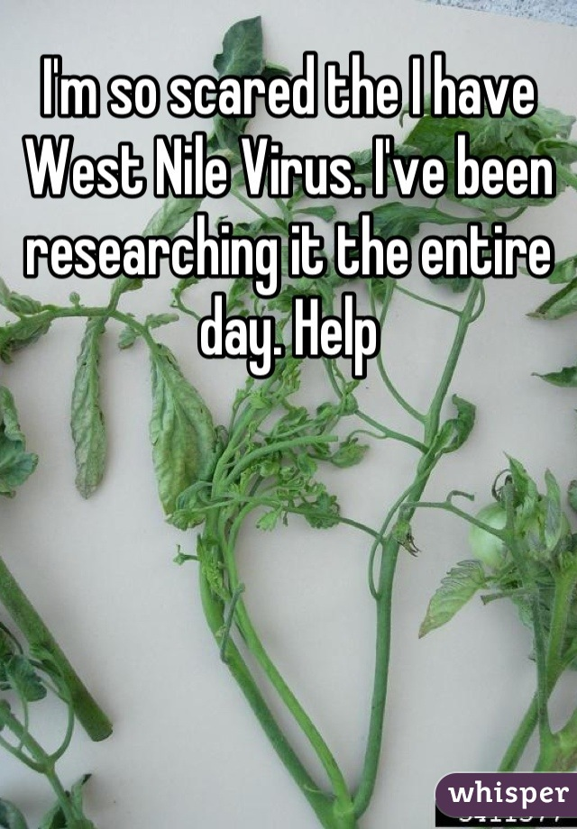 I'm so scared the I have West Nile Virus. I've been researching it the entire day. Help