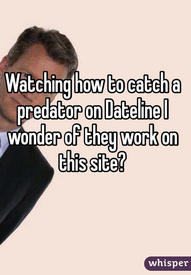 Watching how to catch a predator on Dateline I wonder of they work on this site?