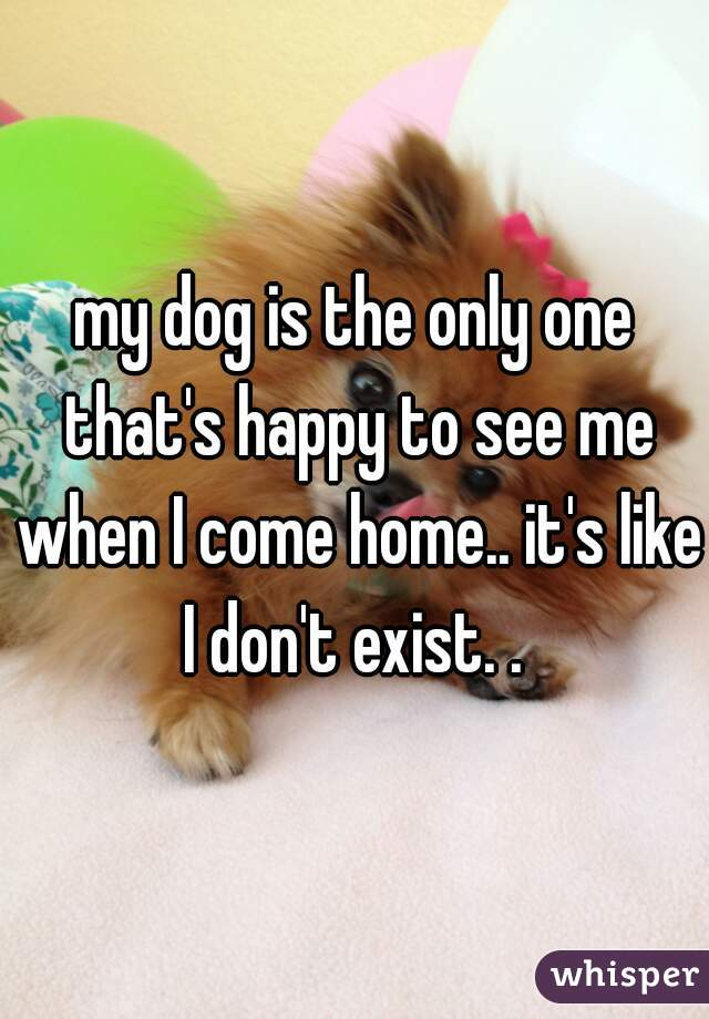 my dog is the only one that's happy to see me when I come home.. it's like I don't exist. .
