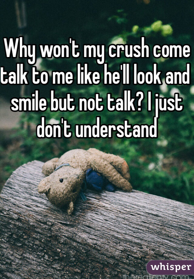 Why won't my crush come talk to me like he'll look and smile but not talk? I just don't understand