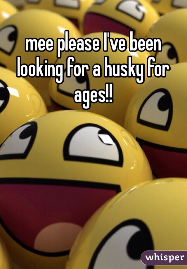 mee please I've been looking for a husky for ages!!
