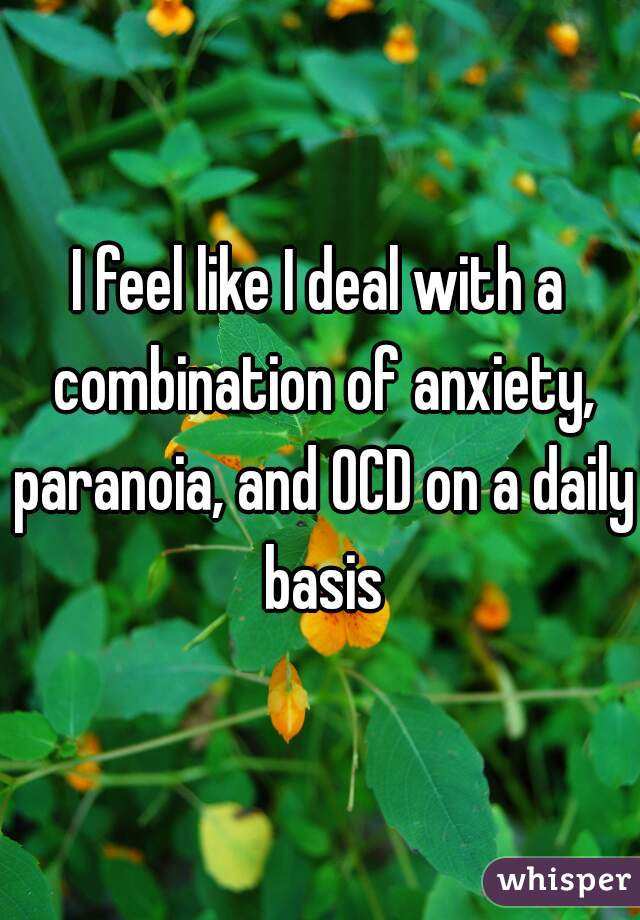 I feel like I deal with a combination of anxiety, paranoia, and OCD on a daily basis