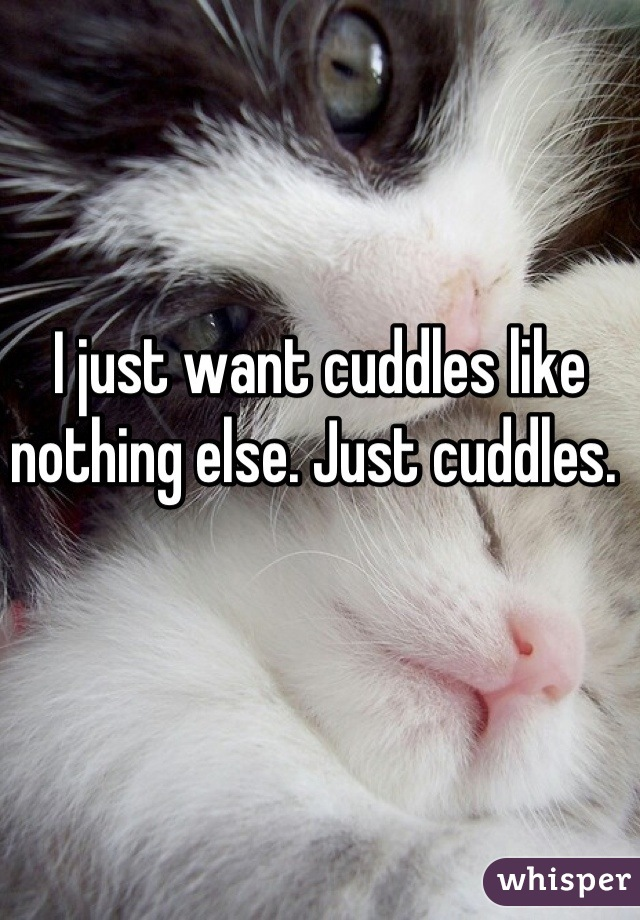 I just want cuddles like nothing else. Just cuddles.