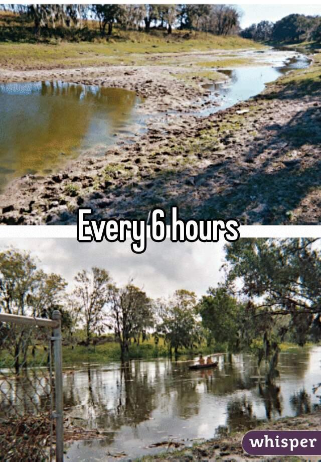 Every 6 hours