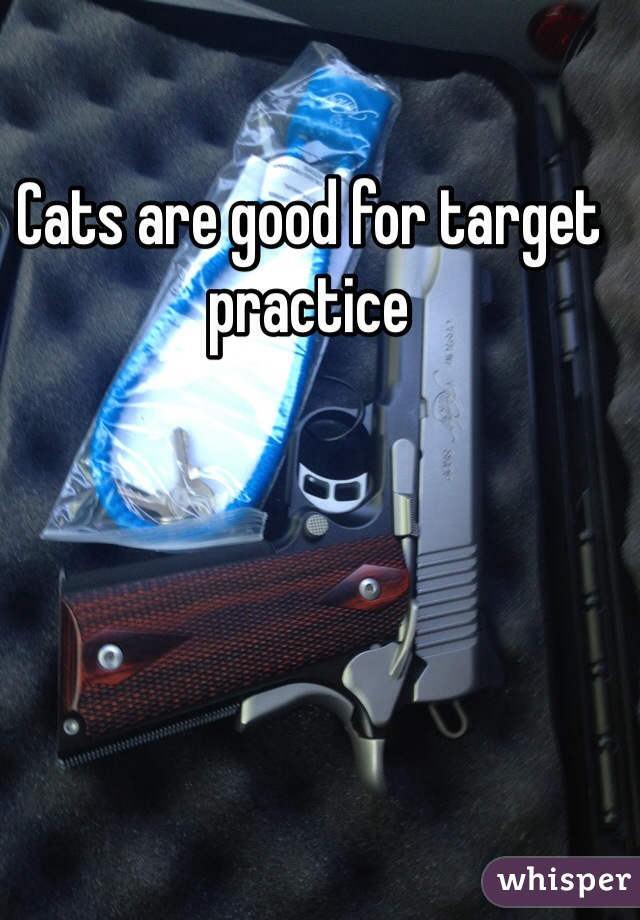Cats are good for target practice