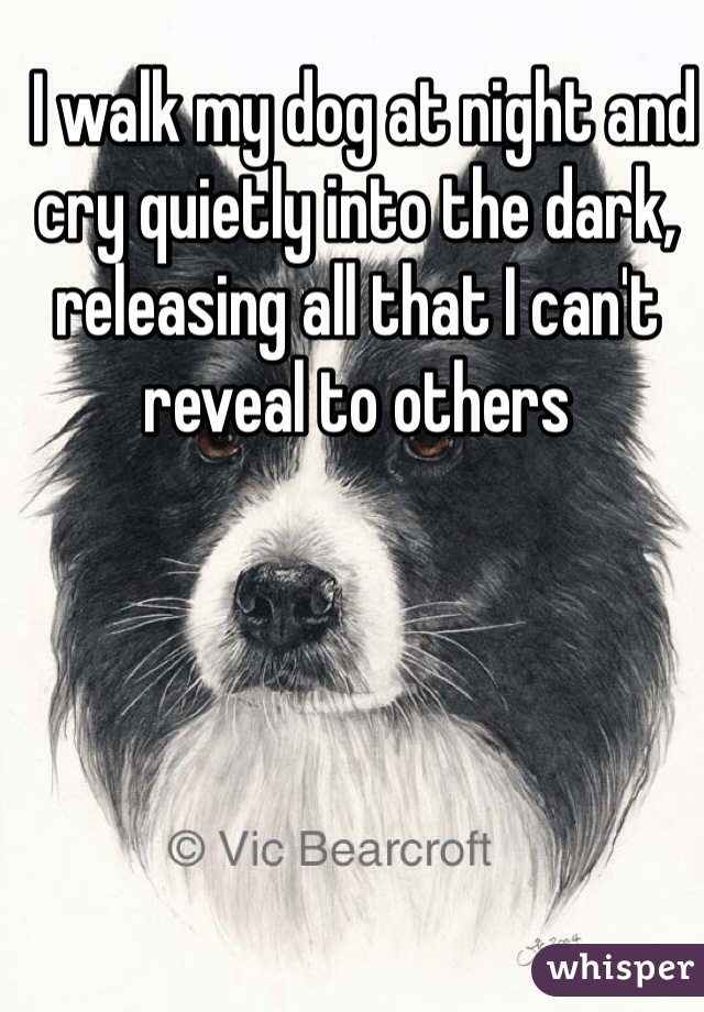I walk my dog at night and cry quietly into the dark, releasing all that I can't reveal to others