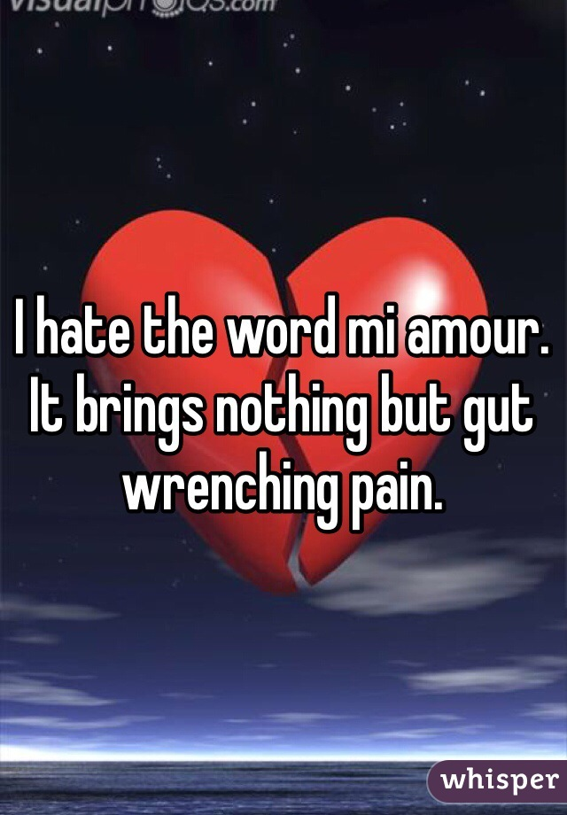 I hate the word mi amour. It brings nothing but gut wrenching pain.