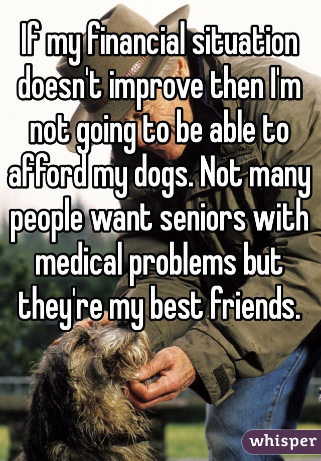 If my financial situation doesn't improve then I'm not going to be able to afford my dogs. Not many people want seniors with medical problems but they're my best friends.