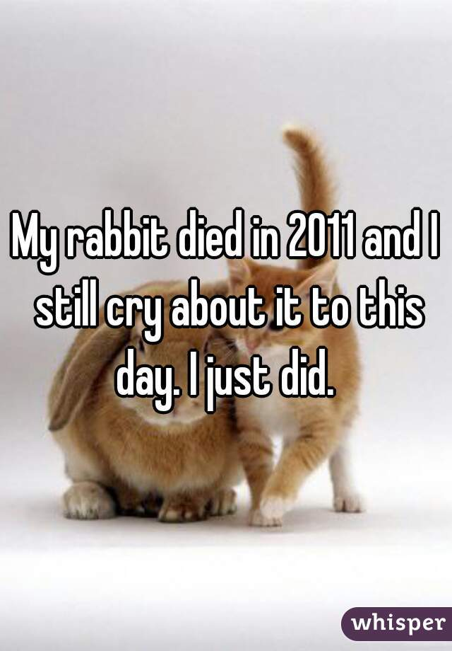 My rabbit died in 2011 and I still cry about it to this day. I just did.