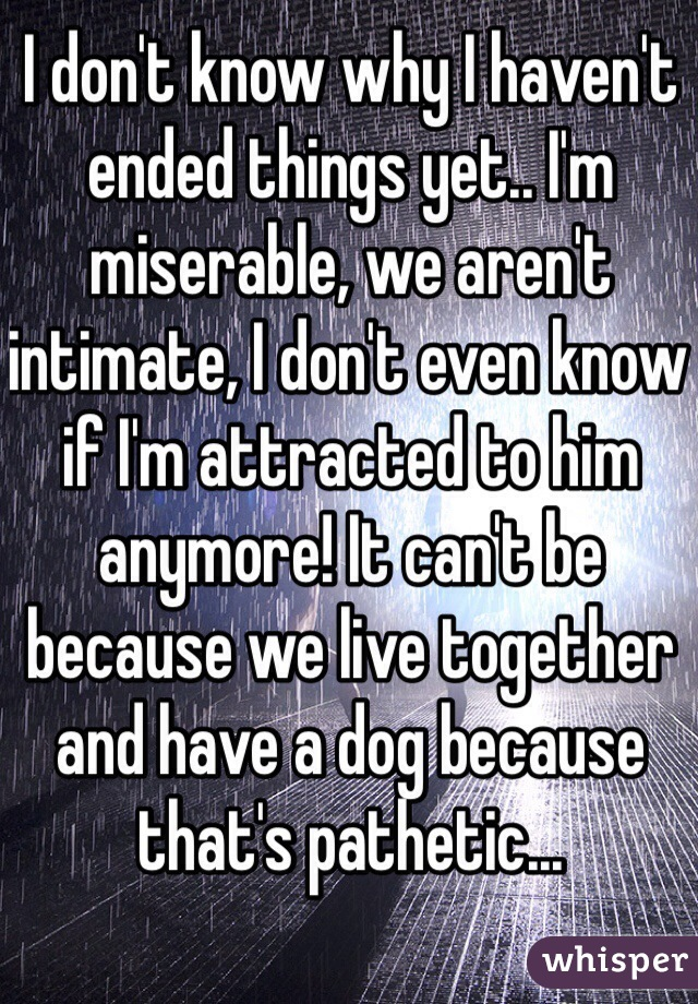 I don't know why I haven't ended things yet.. I'm miserable, we aren't intimate, I don't even know if I'm attracted to him anymore! It can't be because we live together and have a dog because that's pathetic...