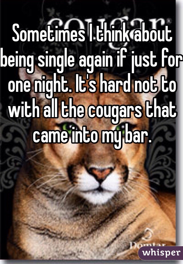 Sometimes I think about being single again if just for one night. It's hard not to with all the cougars that came into my bar.