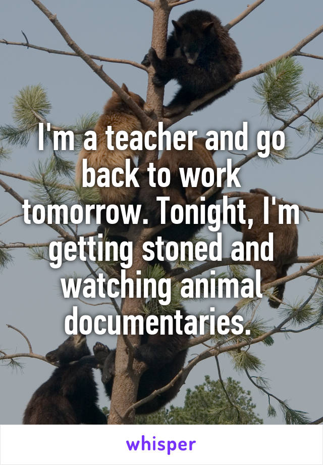 I'm a teacher and go back to work tomorrow. Tonight, I'm getting stoned and watching animal documentaries.