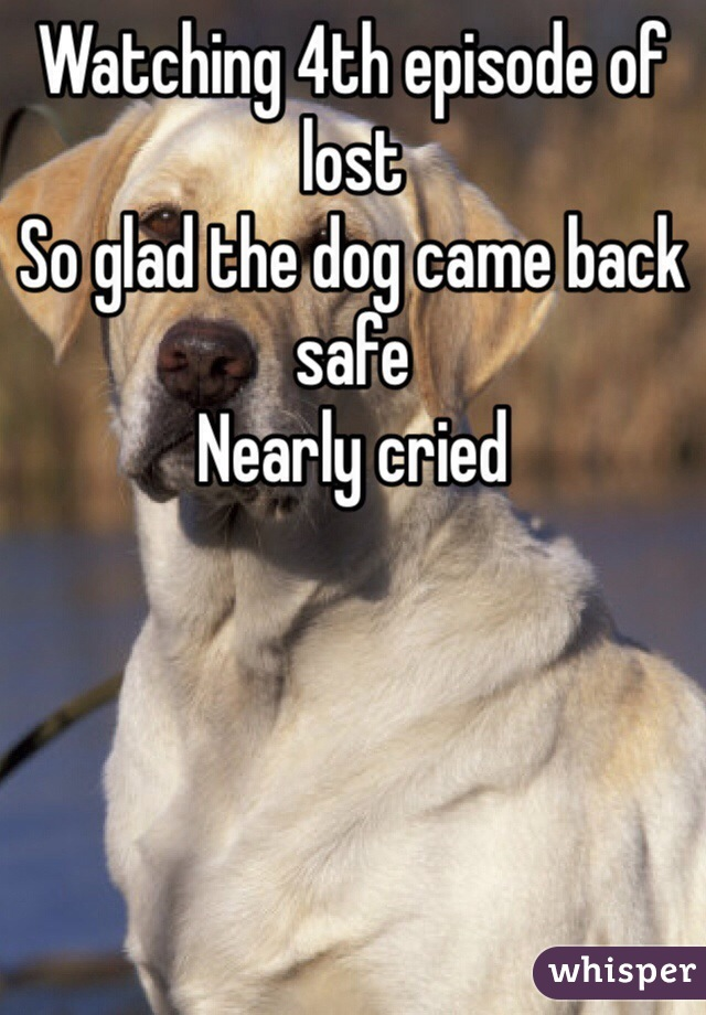 Watching 4th episode of lost  So glad the dog came back safe Nearly cried