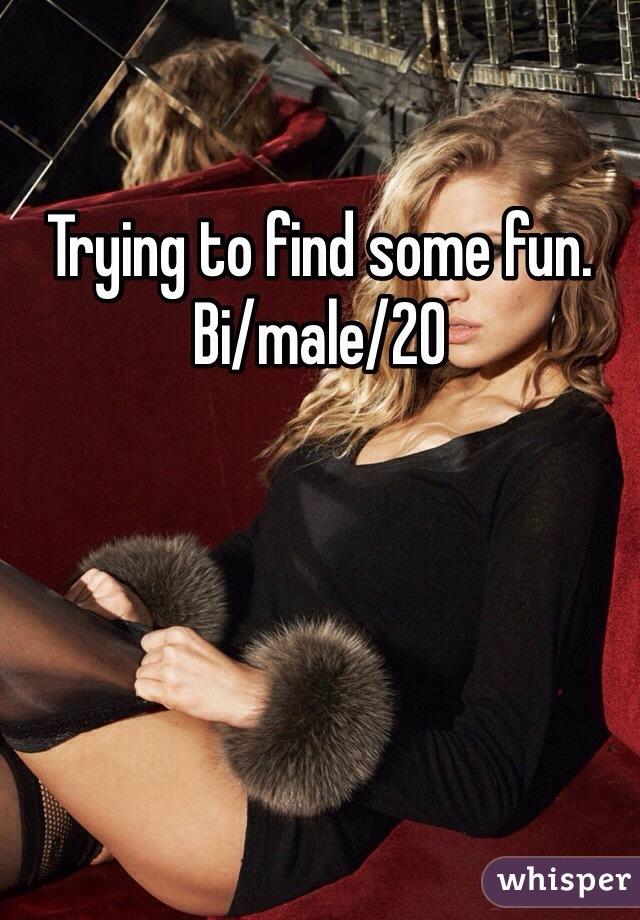 Trying to find some fun. Bi/male/20