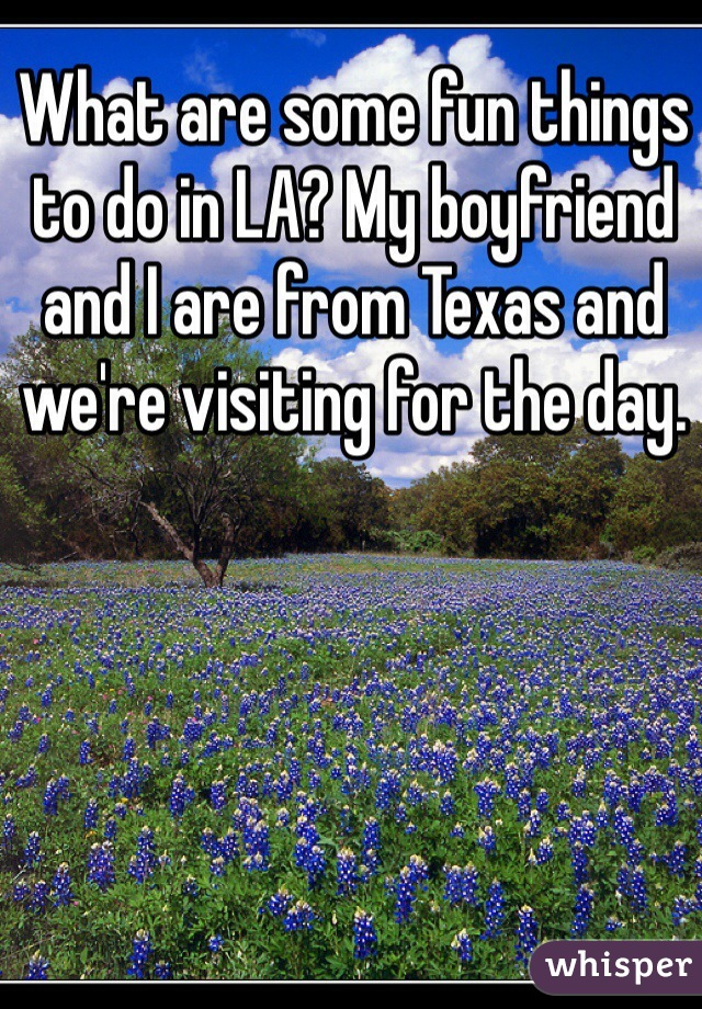 What are some fun things to do in LA? My boyfriend and I are from Texas and we're visiting for the day.