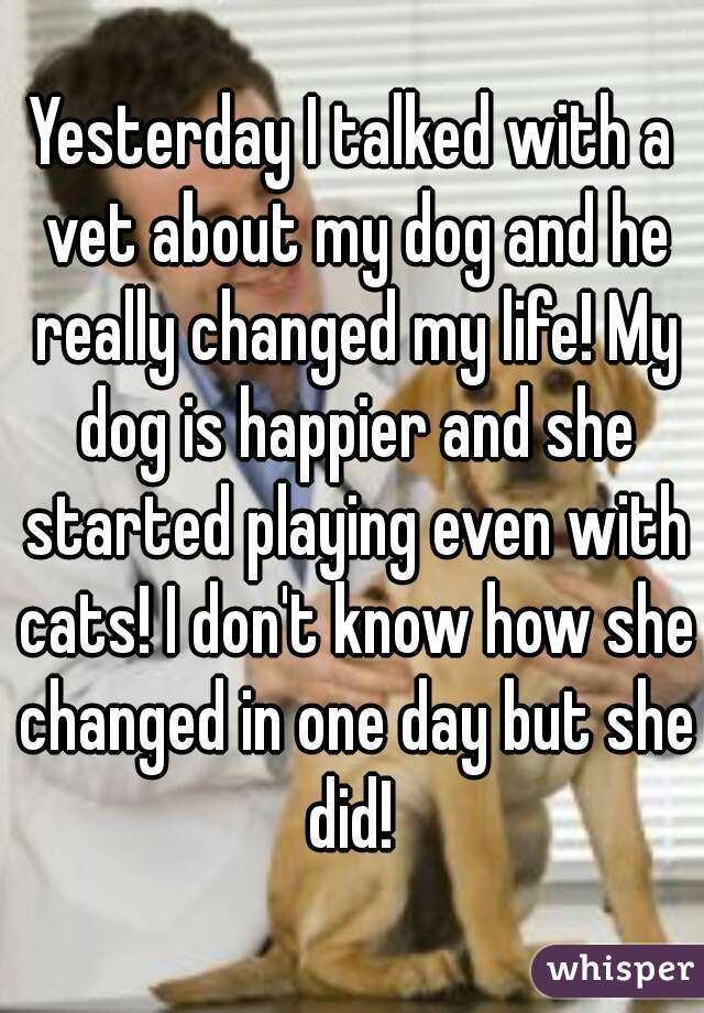 Yesterday I talked with a vet about my dog and he really changed my life! My dog is happier and she started playing even with cats! I don't know how she changed in one day but she did!