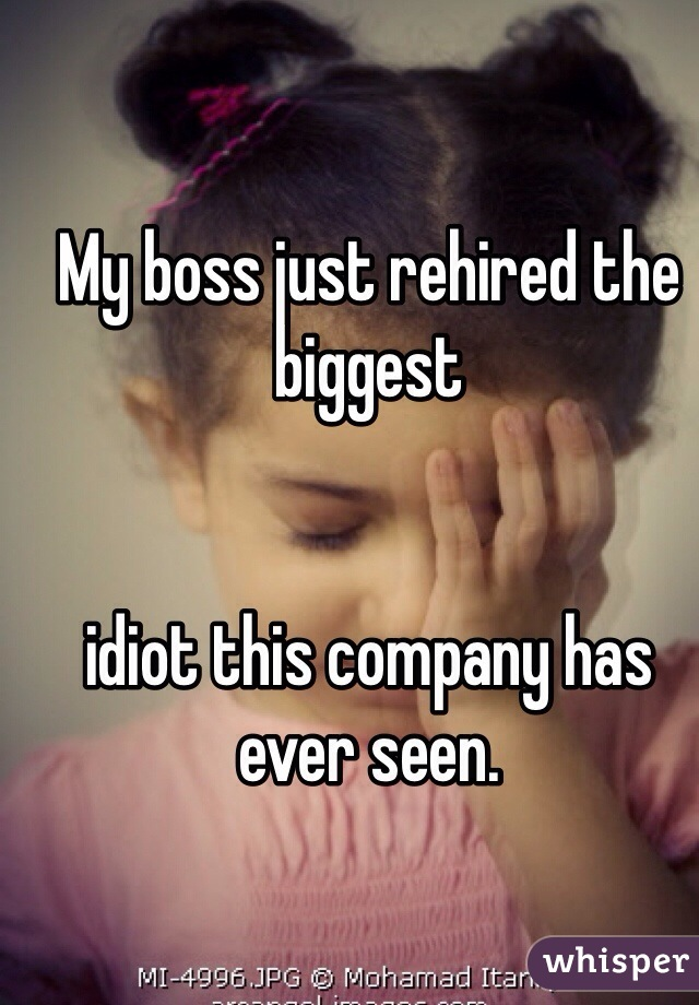 My boss just rehired the biggest    idiot this company has ever seen.