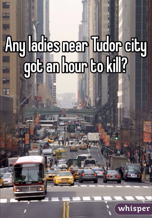 Any ladies near Tudor city got an hour to kill?