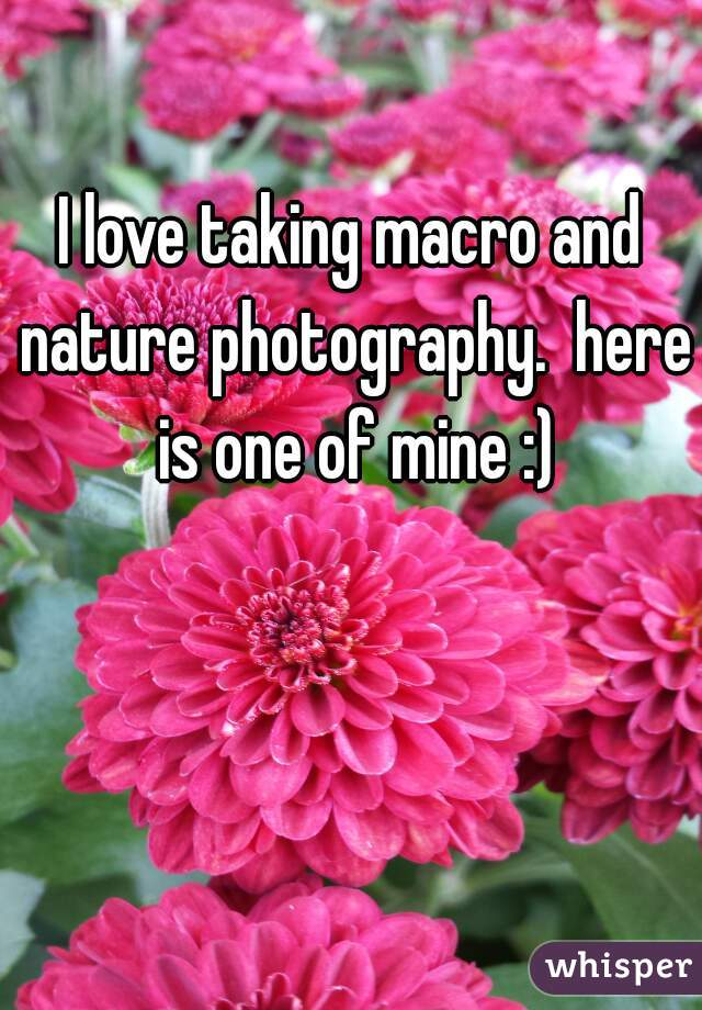 I love taking macro and nature photography.  here is one of mine :)