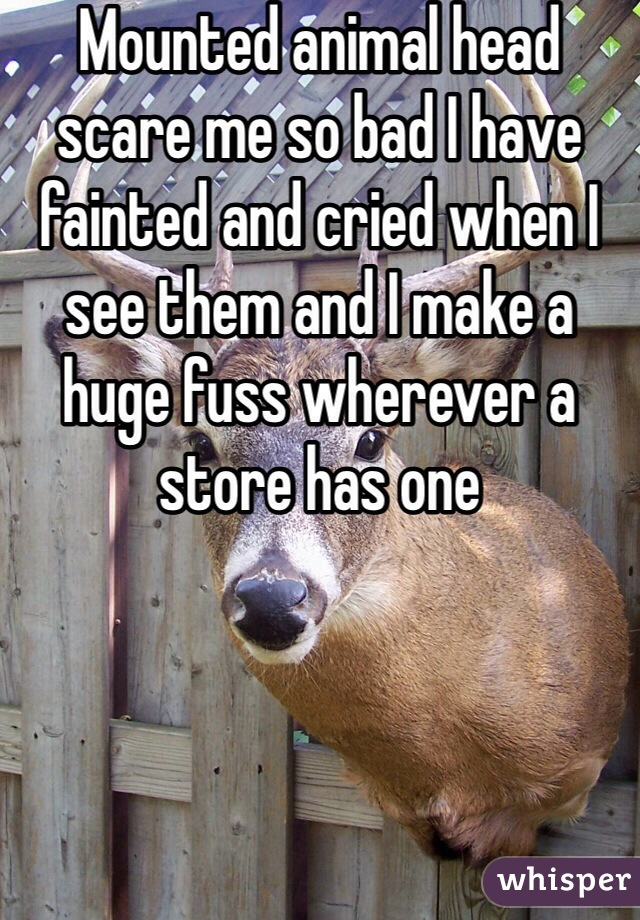 Mounted animal head scare me so bad I have fainted and cried when I see them and I make a huge fuss wherever a store has one