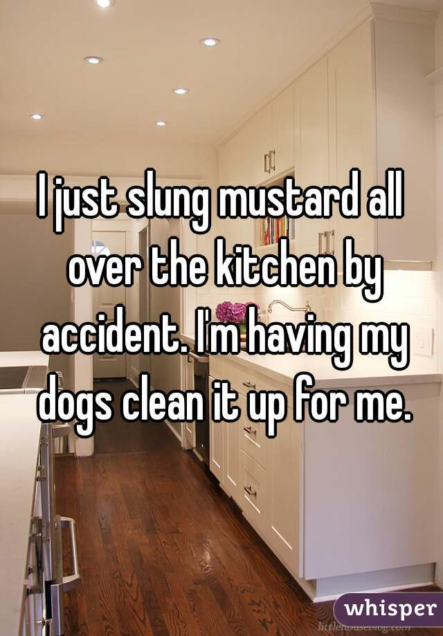 I just slung mustard all over the kitchen by accident. I'm having my dogs clean it up for me.