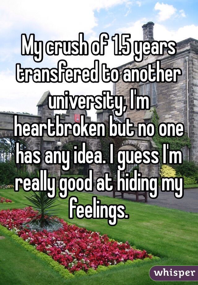 My crush of 1.5 years transfered to another university, I'm heartbroken but no one has any idea. I guess I'm really good at hiding my feelings.