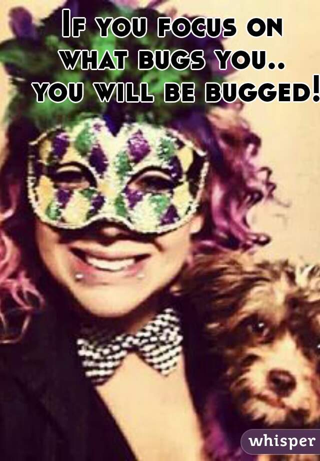 If you focus on  what bugs you..  you will be bugged!