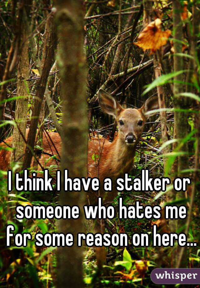 I think I have a stalker or someone who hates me for some reason on here...