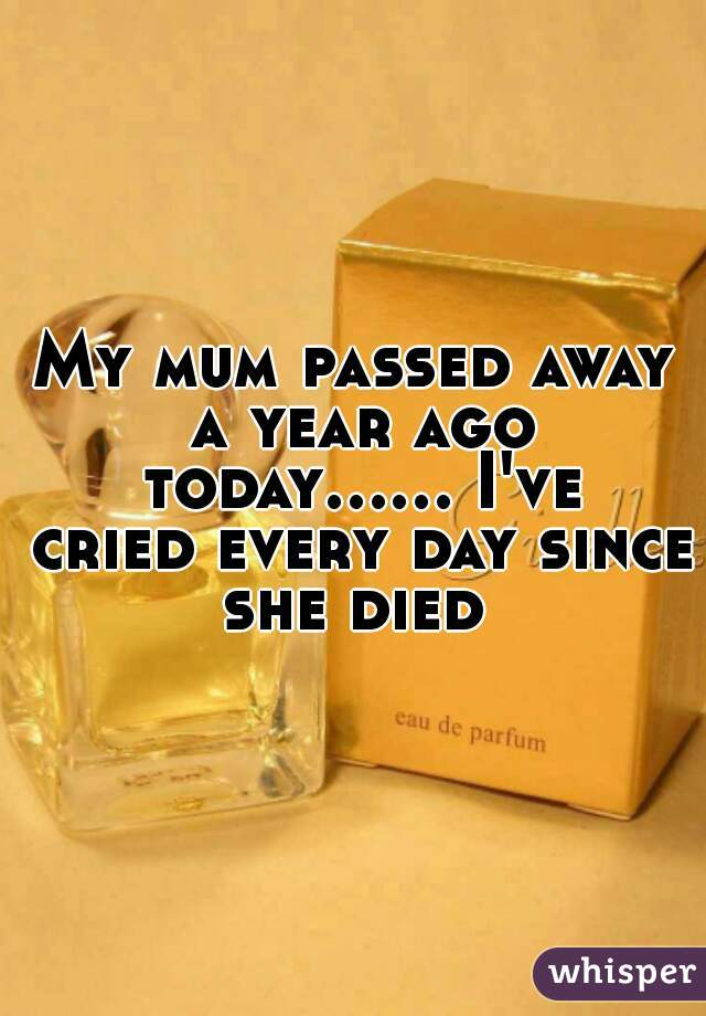 My mum passed away a year ago today...... I've cried every day since she died
