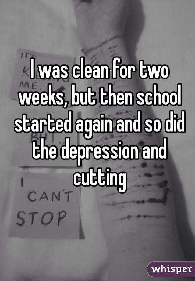 I was clean for two weeks, but then school started again and so did the depression and cutting