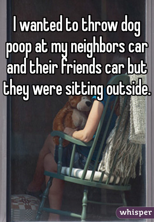 I wanted to throw dog poop at my neighbors car and their friends car but they were sitting outside.
