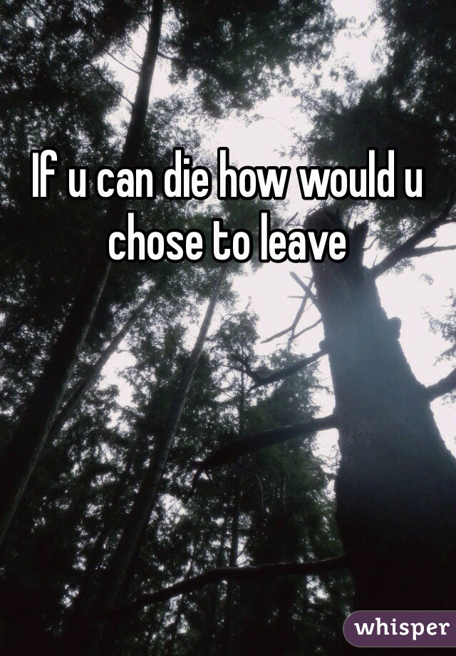 If u can die how would u chose to leave