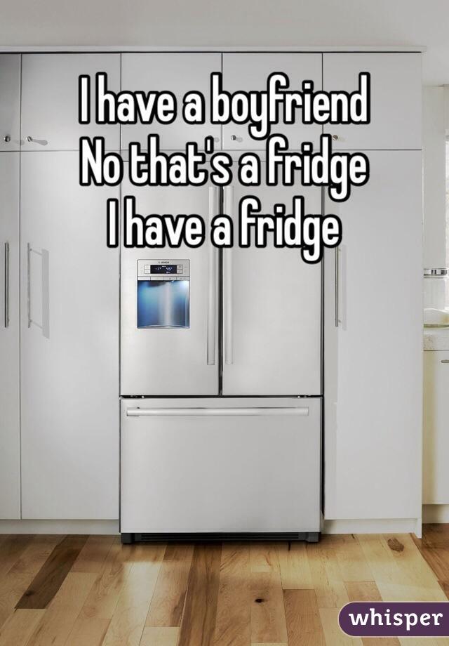 I have a boyfriend No that's a fridge I have a fridge