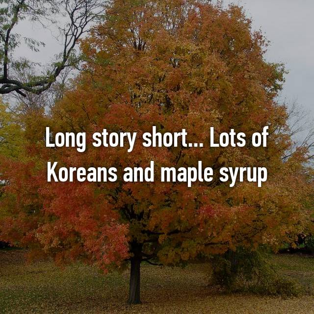 Long story short... Lots of Koreans and maple syrup