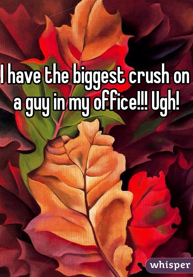 I have the biggest crush on a guy in my office!!! Ugh!
