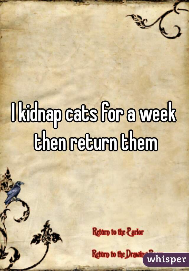 I kidnap cats for a week then return them