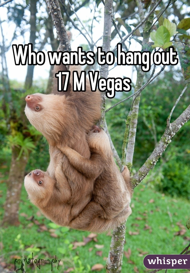 Who wants to hang out  17 M Vegas