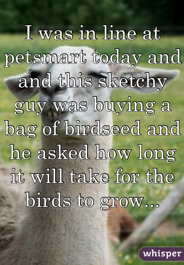 I was in line at petsmart today and  and this sketchy guy was buying a bag of birdseed and he asked how long it will take for the birds to grow...