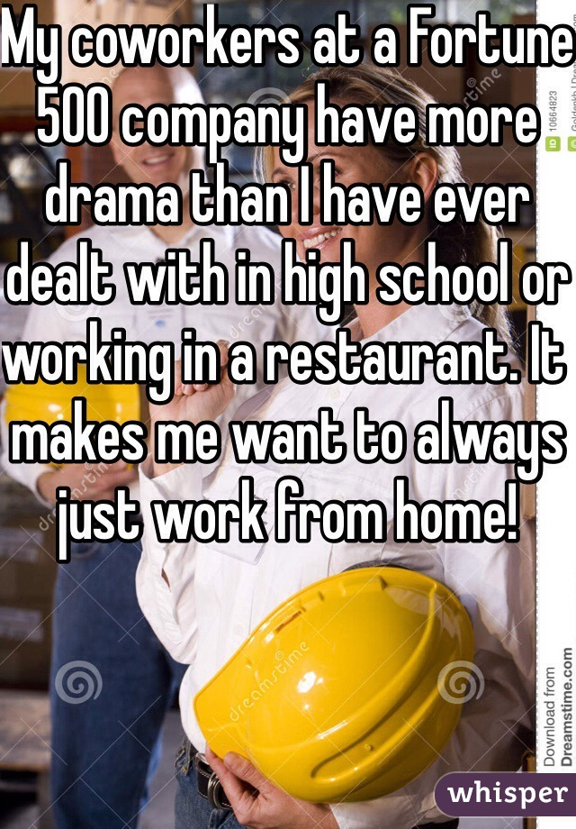 My coworkers at a Fortune 500 company have more drama than I have ever dealt with in high school or working in a restaurant. It makes me want to always just work from home!
