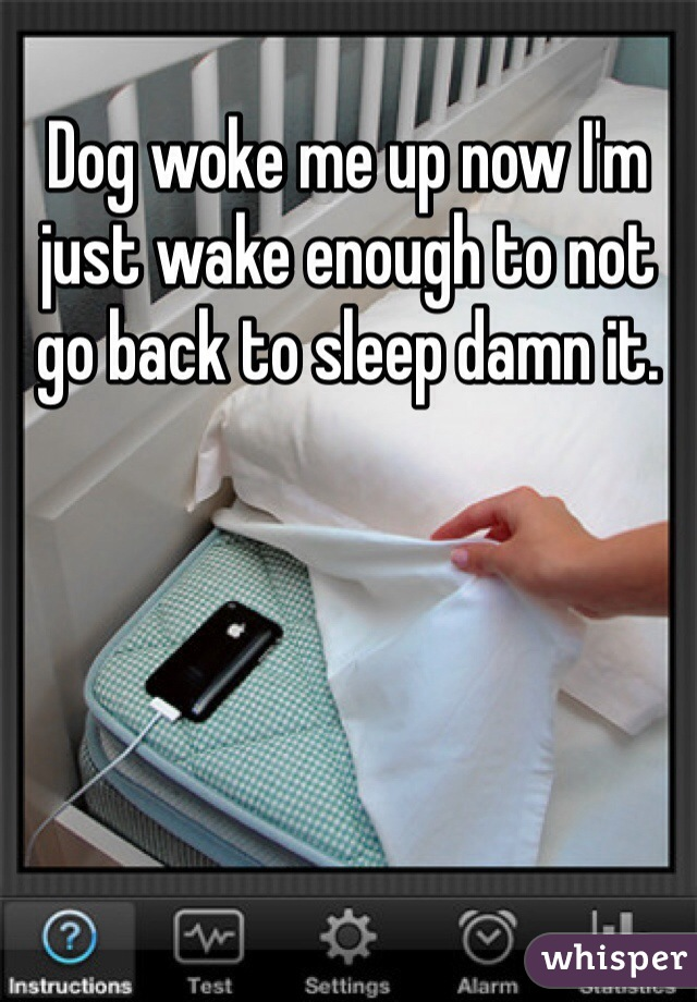 Dog woke me up now I'm just wake enough to not go back to sleep damn it.