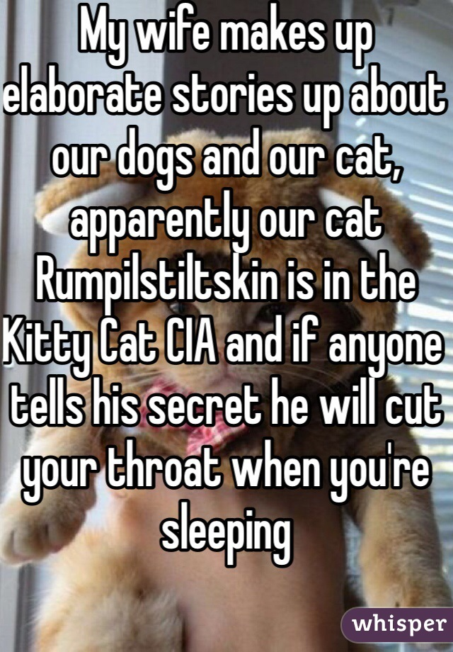 My wife makes up elaborate stories up about our dogs and our cat, apparently our cat Rumpilstiltskin is in the Kitty Cat CIA and if anyone tells his secret he will cut your throat when you're sleeping