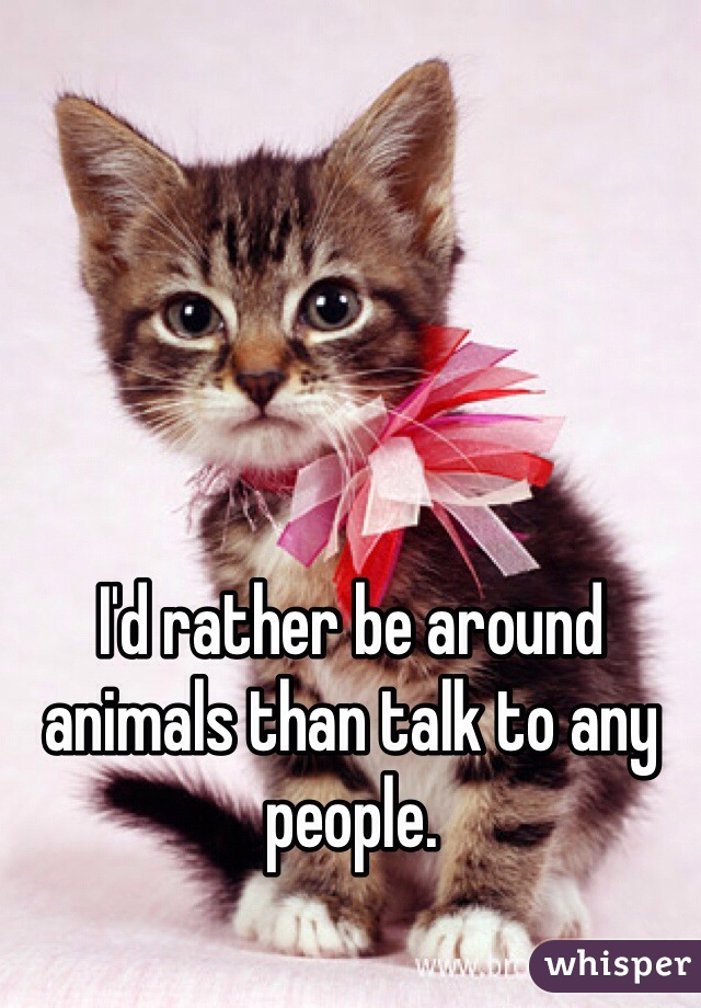I'd rather be around animals than talk to any people.