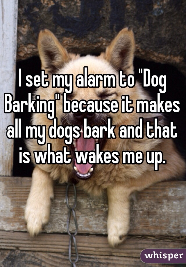 """I set my alarm to """"Dog Barking"""" because it makes all my dogs bark and that is what wakes me up."""
